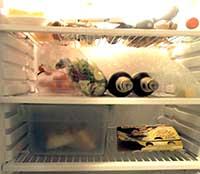 So räumt man den Kühlschrank NICHT ein.